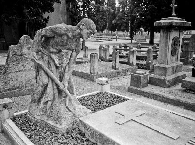 Lladres de tombes? / Body snatcher?