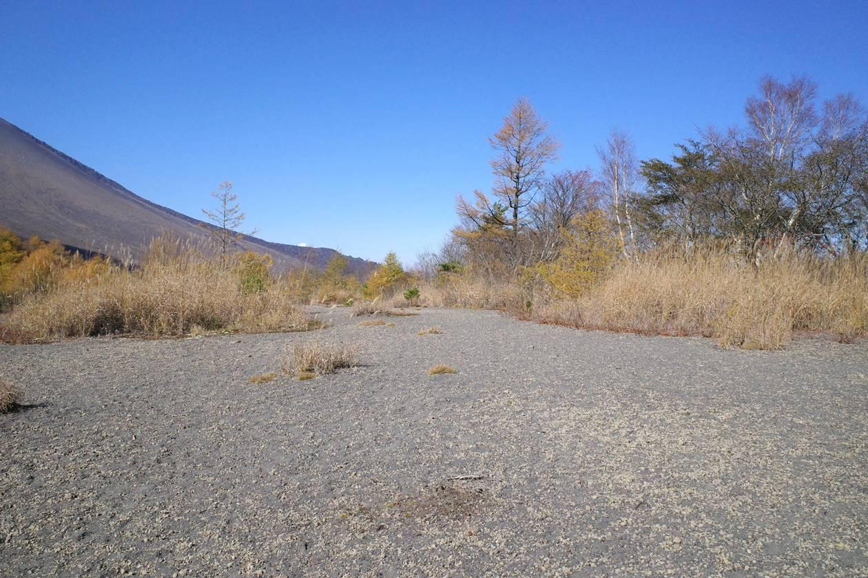 小浅間山 山頂の広場