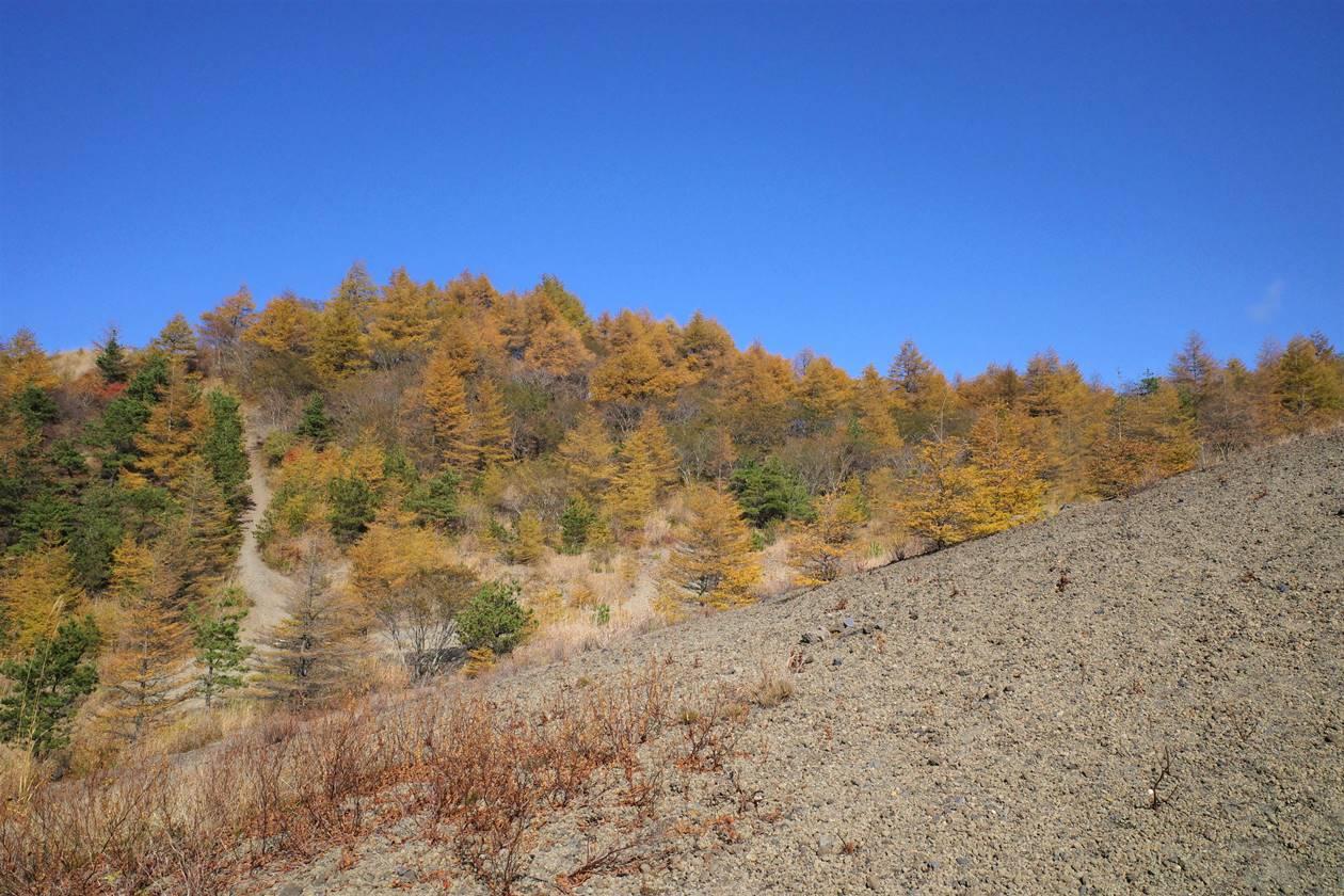 小浅間山の紅葉