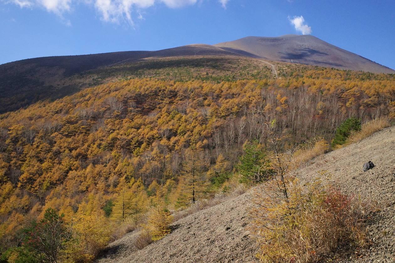 小浅間山から眺める紅葉と浅間山の噴煙