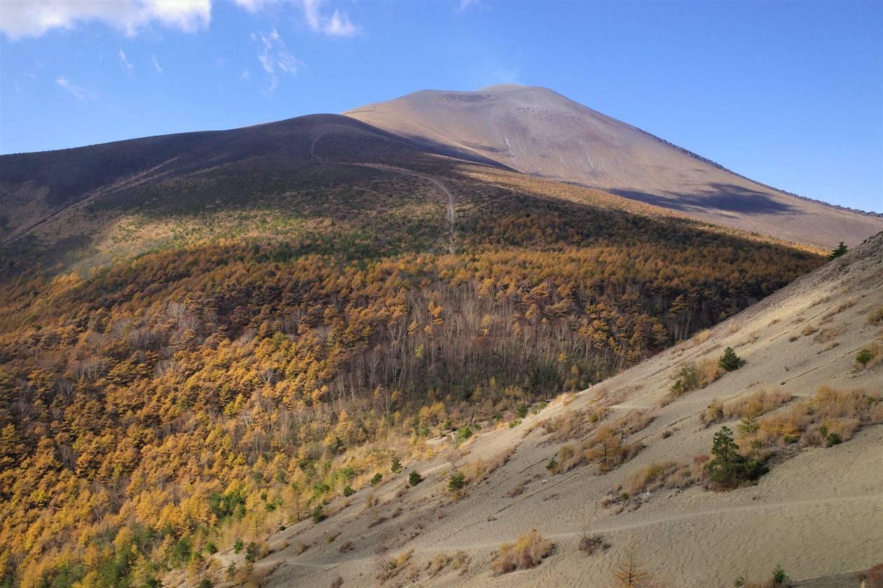 【小浅間山】登山道から眺める浅間山と落葉松の紅葉風景