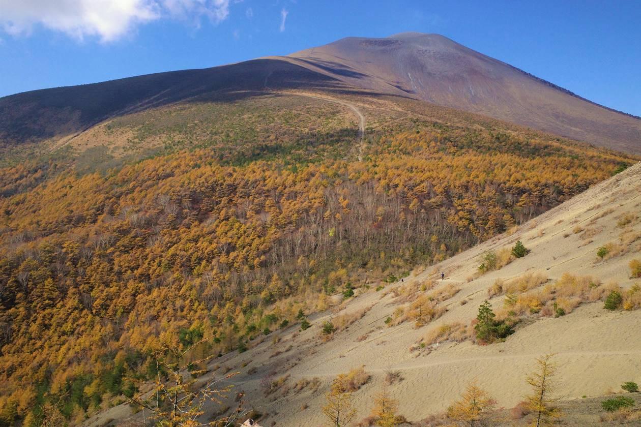 【登山】小浅間山紅葉登山 浅間山と落葉松の絶景