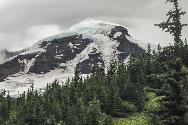 Mt Baker from the Heliotrope Ridge Trail