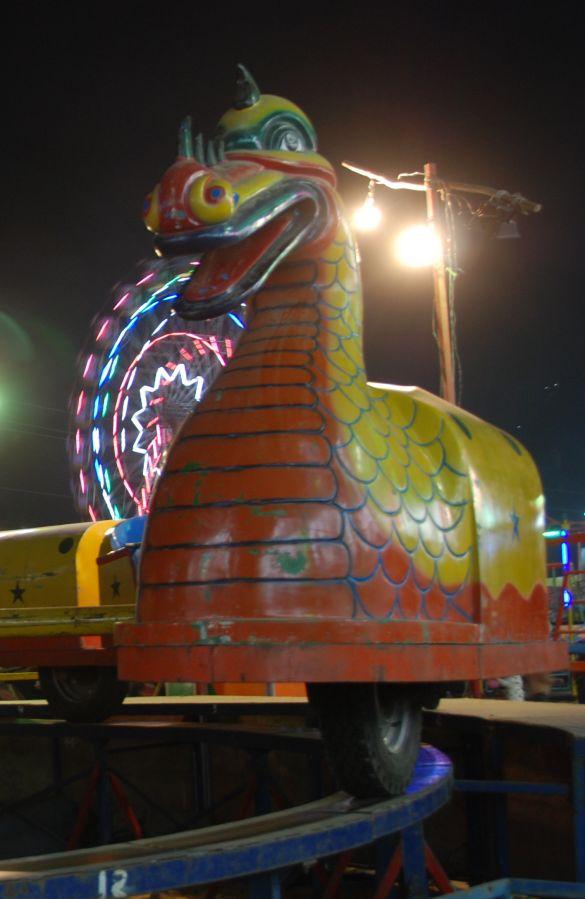 DSC_2145IndiaPushkarCamelFair