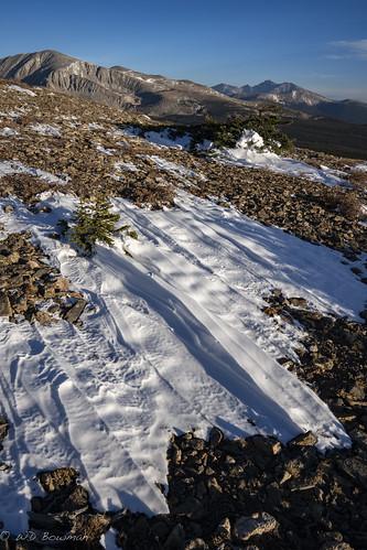 sastrugi niwotridge mountaudubon longspeak snow windsculpted