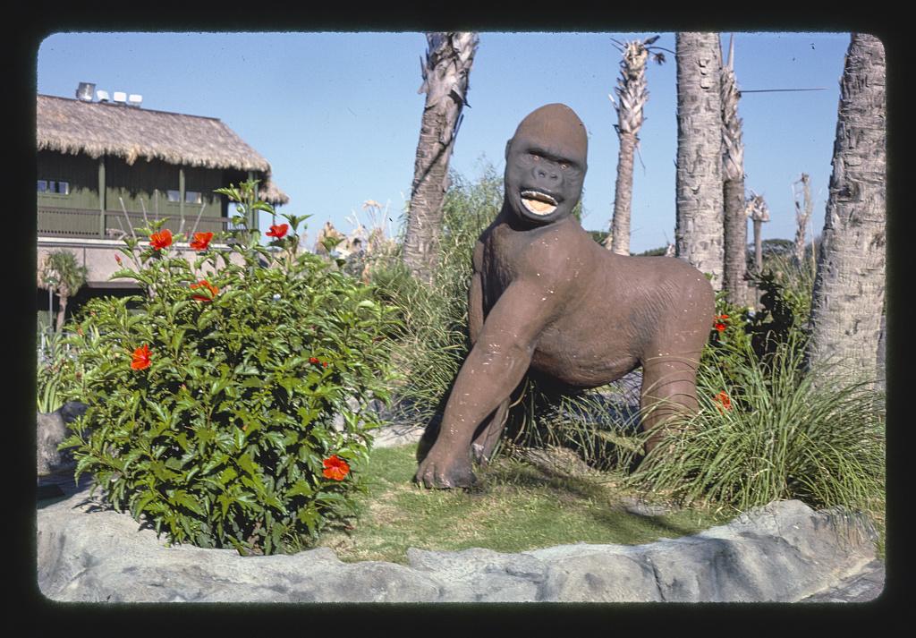 Gorilla, Gorilla Country Golf, Atlantic Beach, North Carolina (LOC)