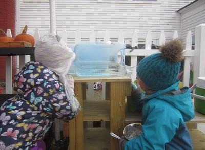 frozen water crystals