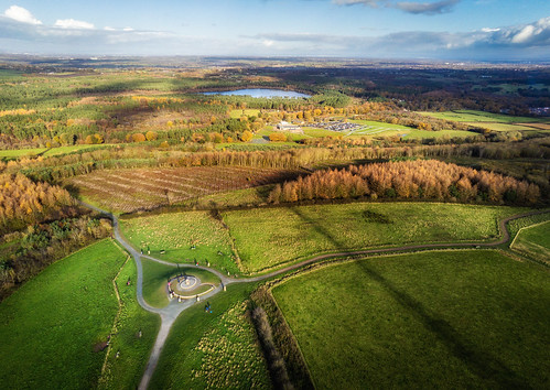 paleheights delamere forest drone parrot anafi autumn cheshire