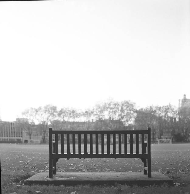 Park Bench, Victoria Square, London