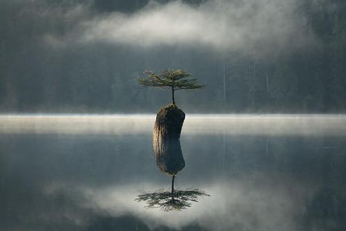 Mists of Renfrew