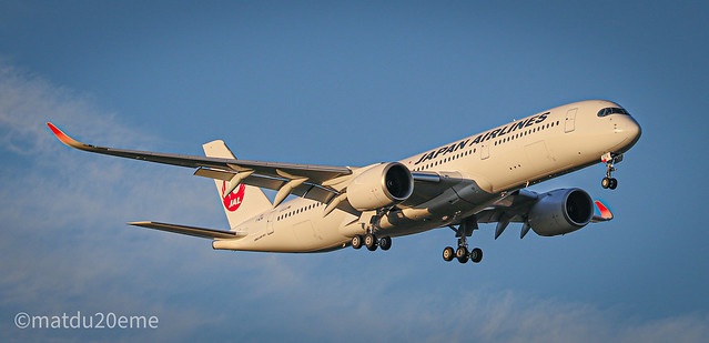 Airbus A350-900 / Japan Airlines