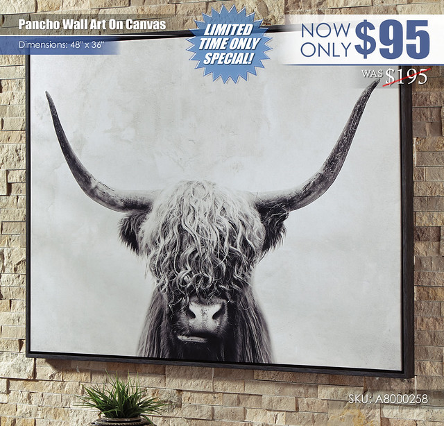 Pancho Wall Art_Clearance_A8000258