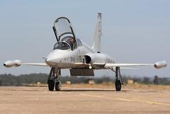 F-5M AE9-010 23-04 CLOFTING_MG_3263+FL