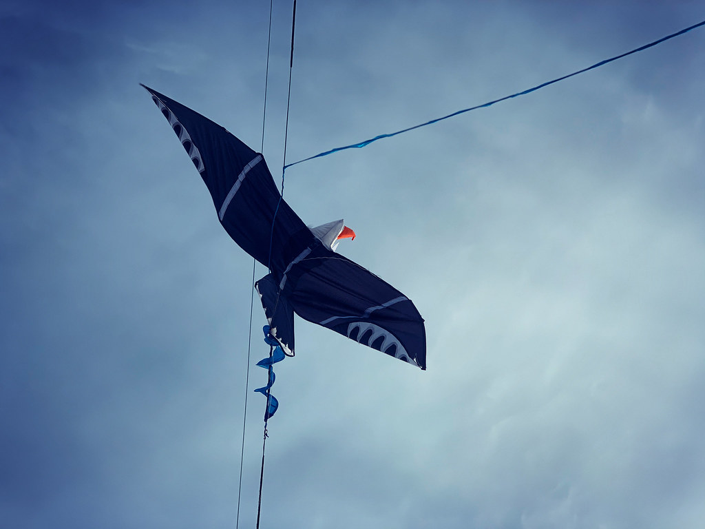 stranded Eagle kite