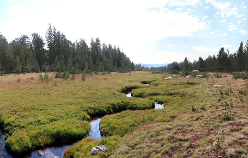The headwaters of Chagoopa Creek winding down a meadow near the western junction of the High Sierra Bypass Trail