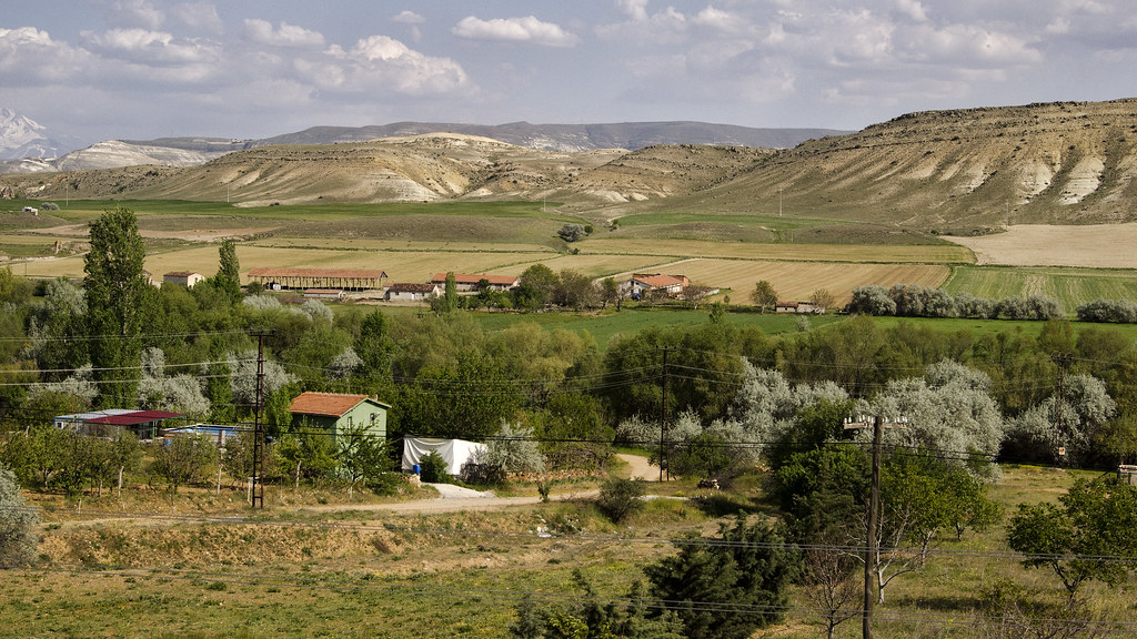 Turkey:  Turkish Countryside - Photo #5