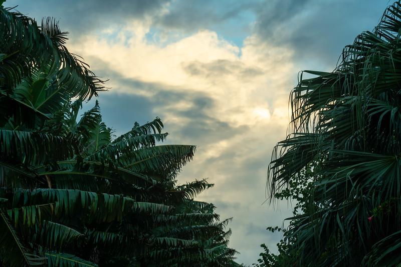 石垣島の朝