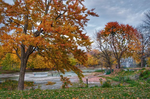 valterb view nikond90 nikkor landscape lines nature trees tranquility autumn fall leaves colors colour color colours light lake