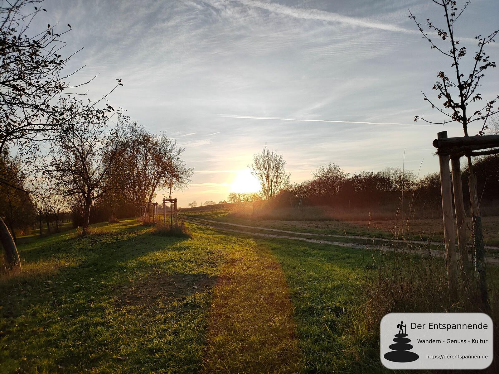 Sonnenuntergang beim Biotop an der Selz bei Hahnheim