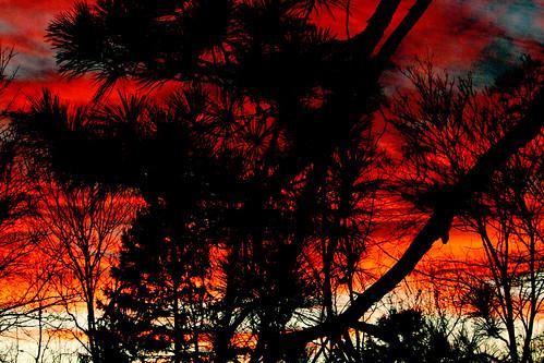 vermont autumn nature outdoors sunset