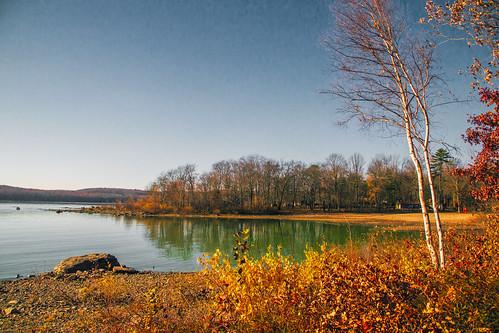 smack53 hawley pennsylvania lake wallenpaupacklaketreeswaterautumnautumn seasonautumnallate falllate autumnfallfall seasonreflectionsnikond3100nikon d3100