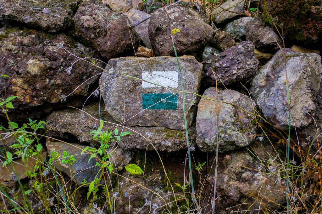 Piedra con la señal de sendero local (franja blanca y franja verde)