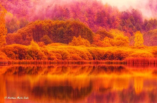 Autumn in Bükk National Park, Hungary