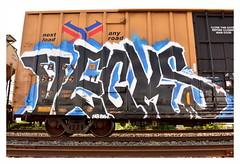 Vecks