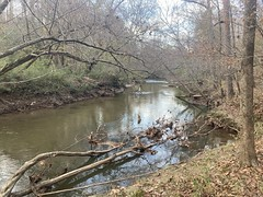 Noonday Creek