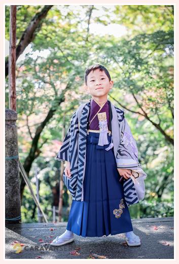 七五三 5才の男の子 ブルーの袴