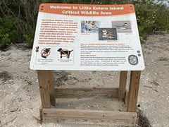 Little Estero Island Critical Wildlife Area