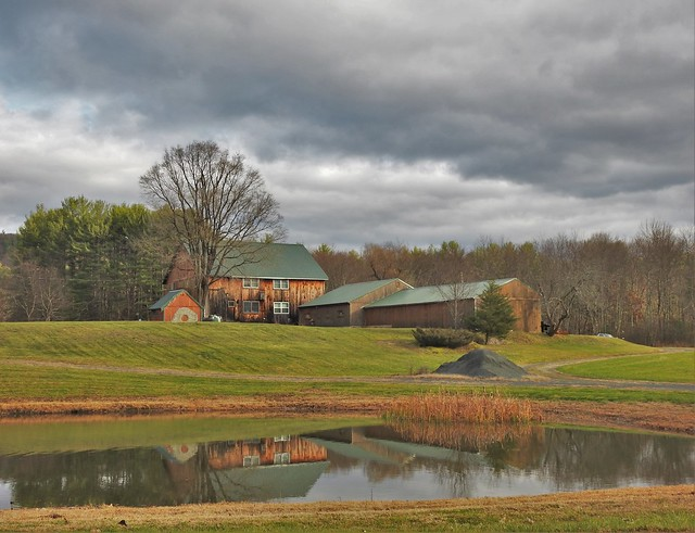 Cushman Rd Farm ~ Leverett MA