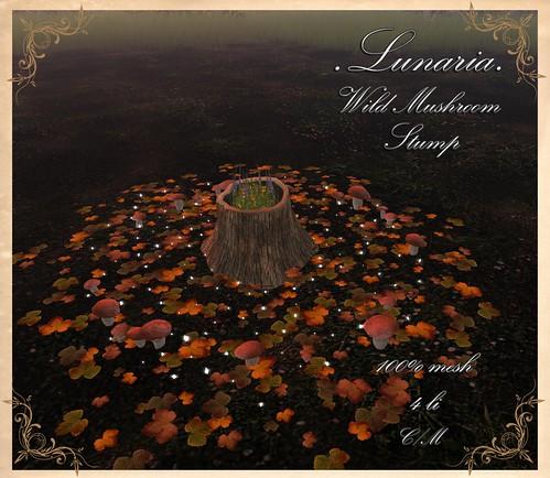 Wild Mushroom Stump MM