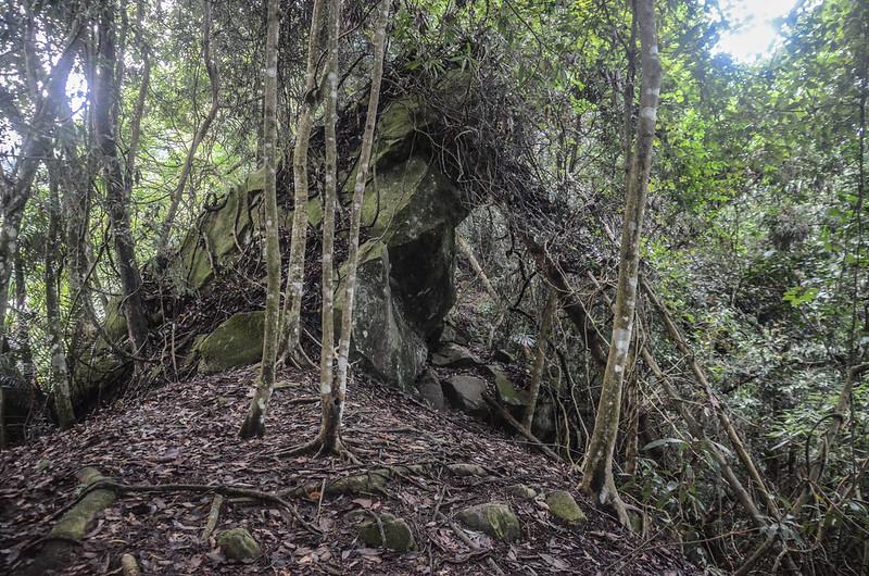 小東河山稜線大岩塊腰繞段 (4)