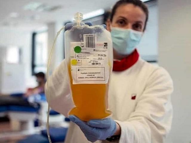 coronavirus-plasma-iperimmune-632635.1024x768