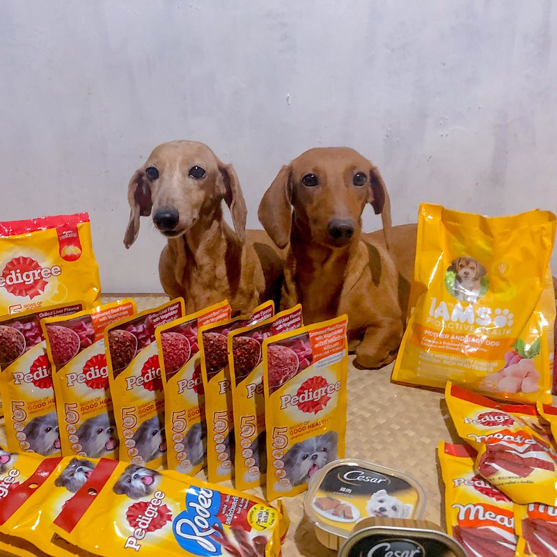 It's Pedigree Brand Day Sale with Shopee