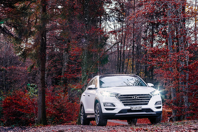 Hyundai Tucson in the wilderness