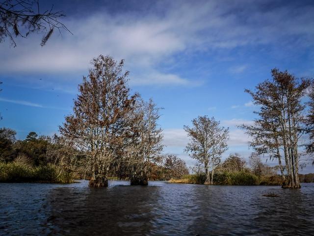 Lake Marion at Low Falls Landing