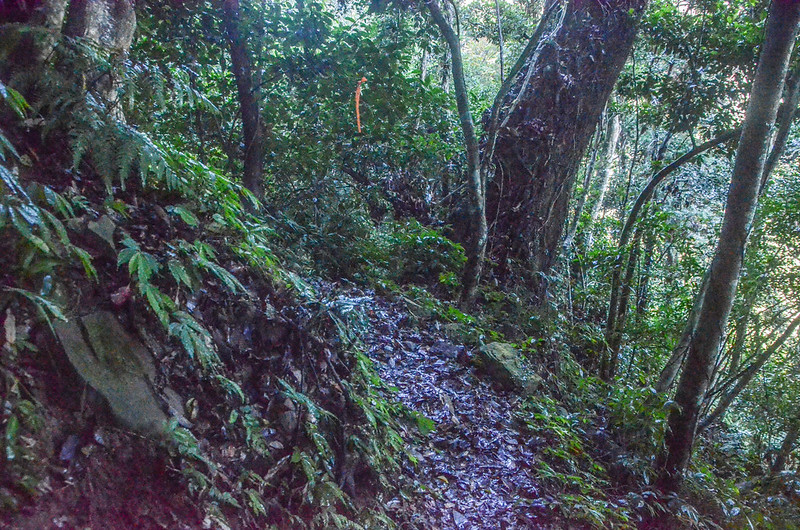 石壁山登山越稜點