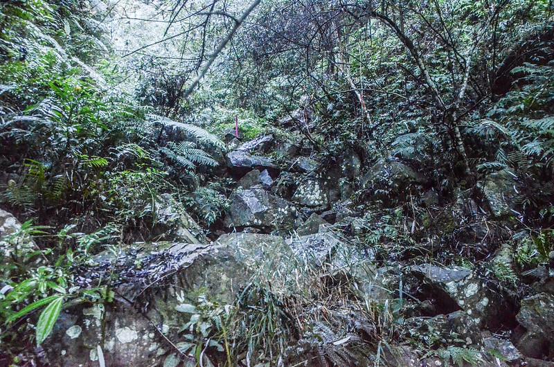 石壁山第一處乾溪谷