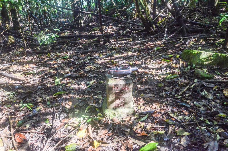 石壁山冠字補川(12)的森林三角點(Elev. 810 m)