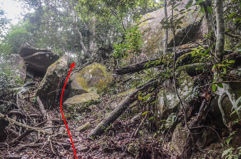小東河山稜線大岩塊腰繞段 (2)