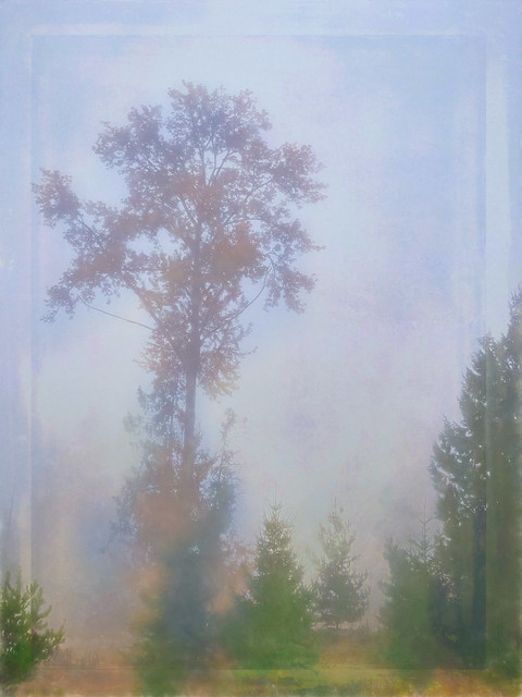 Golden Sentinel in the Mist