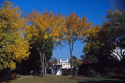Longfellow Park