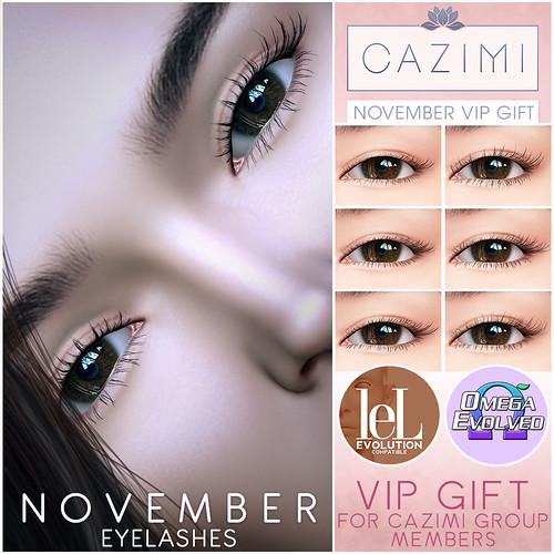 November Lashes VIP Gift