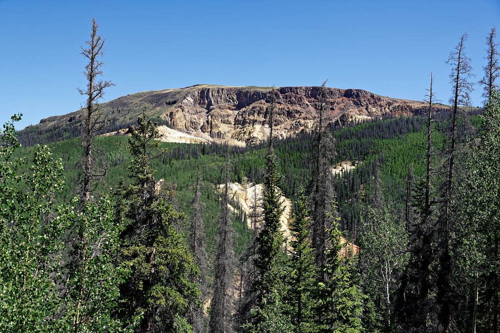 Rio Grande National Forest and a Backdrop with Mesa Seco
