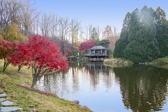 Brookside Gardens Nov 10 2020 (660)