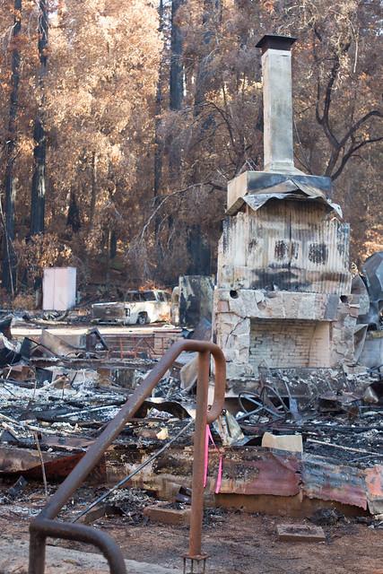 Big Basin Redwoods SP - post-fire tour