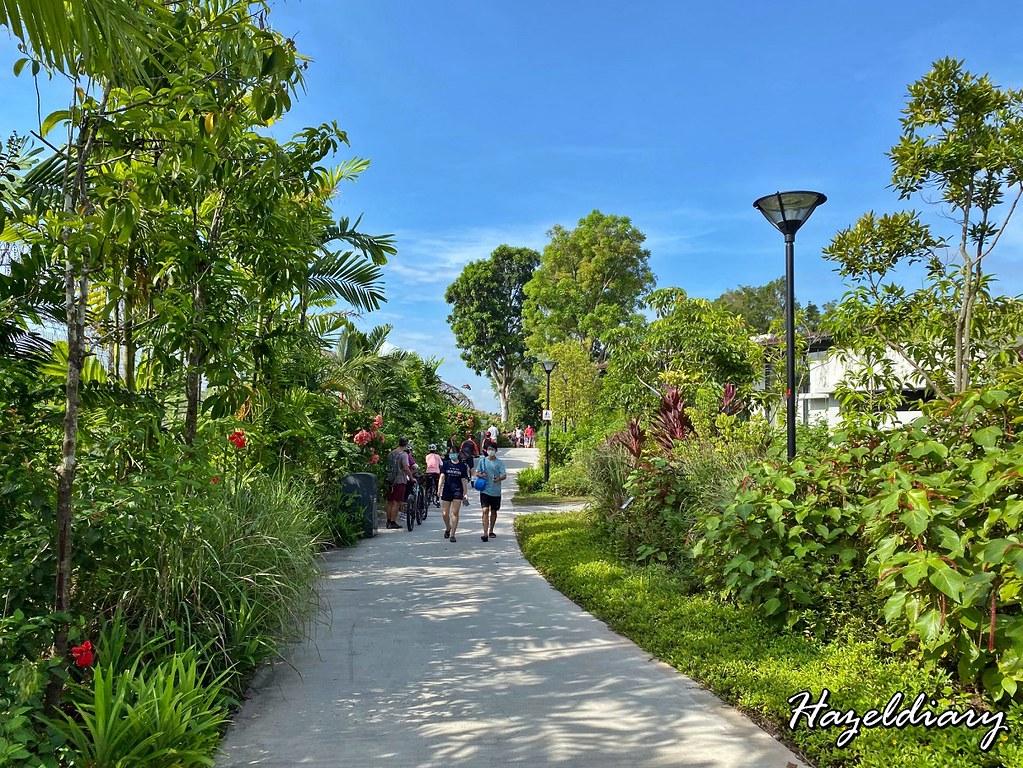 Sembawang Hot Spring Park Singapore-Floral Walk
