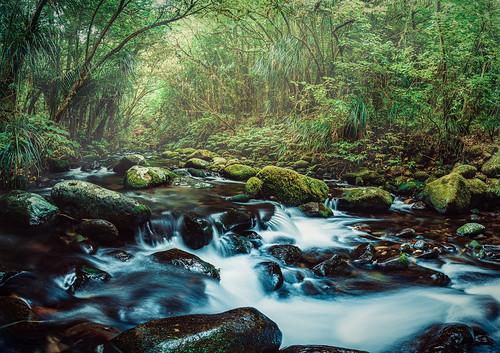 water river green blue landscape stream longexposure instagram white rocks tree outside